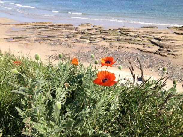 Looking out at Bamburgh Beach