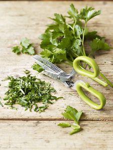 normal_herb scissors